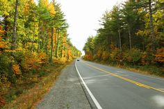 Kejimkujik Scenic Drive, Route 8, near Liverpool, Nova Scotia. An amazing drive this time of the year.