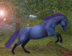 My edit of my SSO horse Jewel! Star Stable Horses, Horse Star, Funny Horses, Animal Jam, Love Stars, Stables, Annie, Jewel, Rocks