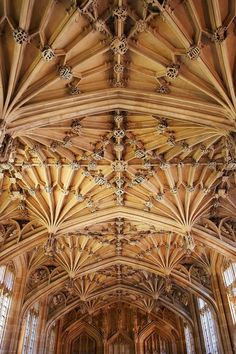 """""""the beautiful divinity school in oxford, england. for harry potter fans, this location was used in the movies as madame pomfrey's infirmary"""" ` Gothic Architecture, Classical Architecture, Architecture Design, Edgar Allan Poe, Oxford United Kingdom, Oxford City, Divinity School, Walter Gropius, Ludwig Mies Van Der Rohe"""