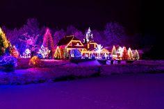 christmas light display in california | Christmas Lights