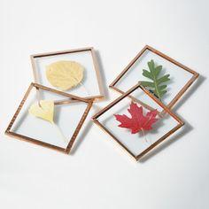Multi-Leaf Coasters