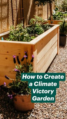 Do It Yourself Discover Ideas Veg Garden, Garden Boxes, Diy Garden Bed, Victory Garden, Container Gardening Vegetables, Small Patio Ideas On A Budget, Garden Landscape Design, Backyard Landscaping, Backyard Garden Ideas