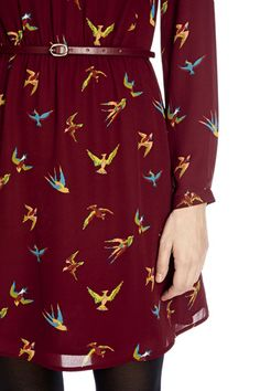 Tropical Bird Dress | Red | Oasis Stores