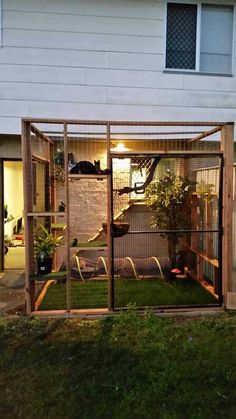 Catio for our indoor kitty – Emily Alexander – … – stan goodwin 381 – Cat playground outdoor Outdoor Cat Enclosure, Diy Cat Enclosure, Rabbit Enclosure, Outdoor Cats, Cat House Outdoor, Outdoor Cat Cage, Outside Cat House, Outdoor Cat Kennel, Dog Kennel Outside