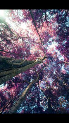 Wallpaper Beautiful World Beautiful Places Beautiful Scenery Natural Scenery Beautiful Sky