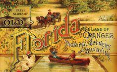 Fresh Slices of Old Florida : tumblr blog