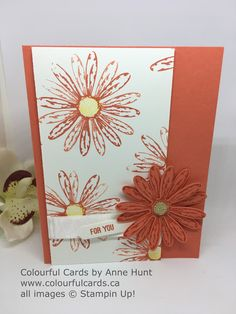 Colourful Cards: Daisy Delight Week - Card #2