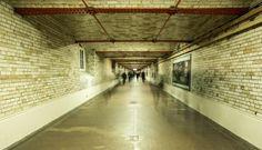 Tunnel-Compressed.jpg (448×257)