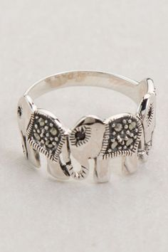 Elephant Ring- I want. I need.