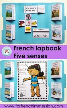 French Five Senses Lapbook: a hands-on, interactive activity to recap and consolidate knowledge about the five senses. Les cinq sens: l'odorat, la vue, l'ouïe, le toucher et le goût.