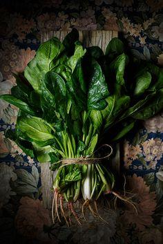 Espinacas by Raquel Carmona www.lostragaldabas.net