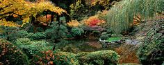 gallery-Flowers and Gardens-page 1