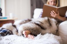 """The Royal Scout & Co. throw is the quintessential home accessory, providing  texture, color and elegance to any room, be it at the foot of a bed, draped  over a sofa or high-styling a single office chair.  Our three faux-fur selections:  """"The Foxy""""fur has rich,cream,grey and golden tones and is an exclusive  color-way to Royal Scout and Co.   """"Woodland Mink""""ushers in a Vintage Royal ambience to any room.  """"Warm Wolf""""is as luxurious as it sounds, offering glamourous warmth to any  home…"""
