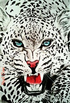 Jaguar B&W Charcoal & color pencil drawing  @Nayeli.ochoa.509