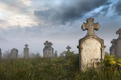 As Canada moves toward legalizing assisted suicide, Catholic bishops and a large Protestant coalition – along with Jewish and Muslim leaders – have joined together to reaffirm the need to help the suffering without killing them. Tombstone Epitaphs, Kirk Cameron, Entertainment Blogs, Catholic Bishops, Hades And Persephone, Die Young, Local Seo, Time Travel, Cemetery