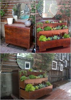 DIY Old Dressing table Gets a New Life as a Succulent Garden ideas