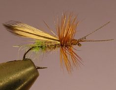The Hackle Wing Caddisl Fishing Fly