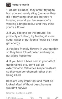 please don't kill bees, they're just little friends who want to find some nice flowers. they don't want to hurt you