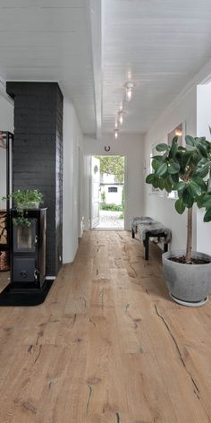 rustic flooring How to choose wooden flooring Wooden Flooring, Hardwood Floors, Wooden Floors Living Room, Flooring Ideas, Terrazzo Flooring, Cork Flooring, Kahrs Flooring, Rustic Wood Floors, Apartments