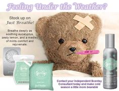 Just Breathe - Breathe deeply as soothing eucalyptus, zesty lemon, and a medley of mints comfort and rejuvenate. Scent Bar, $5 Scent Pak, $7 Travel Tin, $5 Room Spray, $8 **Zuku Zebra SOLD OUT** But, browse my website for our available Scentsy Buddies ♥ brandyhaselroth.s...