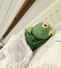 61 Ideas For Memes Kermit The Frog The Muppets Kermit Der Frosch Meme, Kermit The Frog Meme, Meme Pictures, Reaction Pictures, Cute Memes, Funny Memes, Sapo Frog, Sapo Kermit, Mood Pics