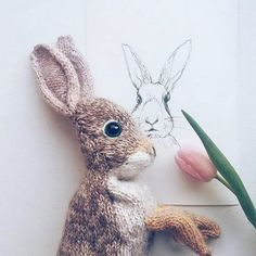 Mesmerizing Crochet an Amigurumi Rabbit Ideas. Lovely Crochet an Amigurumi Rabbit Ideas. Knitting Kits, Knitting Patterns, Crochet Patterns, Instagram Gallery, Diy Laine, Youtube How To Make, Crochet Fall, Yarn Bowl, Paintbox Yarn