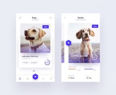 Design ux and ui for your mobile or web app by Biyasiqbal Mobile Ui Design, App Ui Design, Interface Design, User Interface, Web Design, Dog Apps, Application Mobile, Mobile App Ui, Pet Rabbit