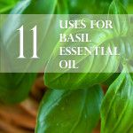 11 Uses for Patchouli Essential Oil - AJA Health Essential Oil Carrier Oils, Basil Essential Oil, Patchouli Essential Oil, Essential Oil Perfume, Doterra Essential Oils, Essential Oil Blends, Patchouli Oil, Young Living Oils, Young Living Essential Oils