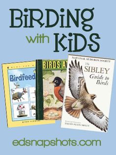 Do you love to bird watch or do birding with your kids? Great resources and ideas for birding including tips for how to find birds and books for bird identification.
