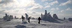Winterreise Schweden - Winterliches Lappland erleben  Photo: Salla Reindeer Park