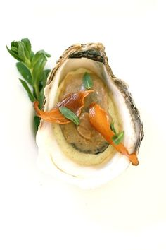 miso cured oyster 4/11