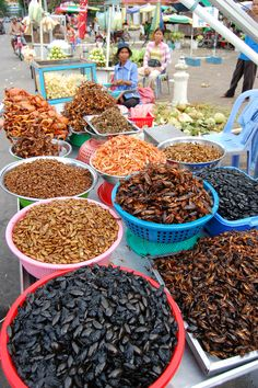 Insect cuisine in Phnom Penh - would youv try ? South Cambodia