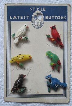 ButtonArtMuseum.com - Bird button goofies/realistics