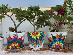 Planters Mandalas on pots Painted by me