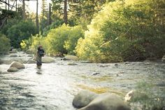Early Morning Fly Fishing - West Carson River