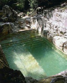 Outside Decor/ Swimming Area