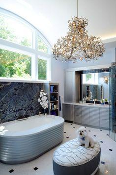 Contemporary Master Bath contemporary bathroom