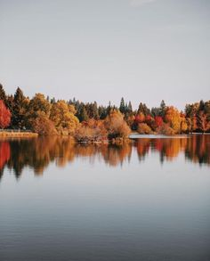 Autumn in the PNW. Shot by @ianandrewnelson | Follow us @upknorth on Instagram