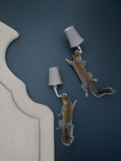 "I do not understand this:  for cottage  ""taxidermy squirrel wall lights from atelierrandel - wonder if they could survive the dog?"""