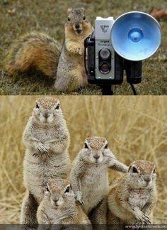 Let's take a family photo