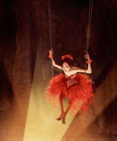 "Erin McGuire's - ""Circus"""