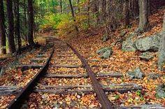 abandoned railroad tracks - Google Search