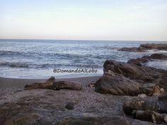 #18 El sol y la playa. Mis amores prohíbidos #lupus #EMsfc #MEcfs #ESIE #SEID #fibromialgia #fybromialgia #fotosensibilidad #photosensibility #fotofobia #photofobia #fatiga #fatigue #dolor #pain