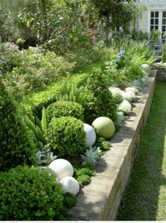 Great mix of plantings. Love the concrete spheres and moss between.