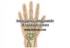 Photo drsuciu - Osteoporoza - nutrimentele - sanatatea osoasa