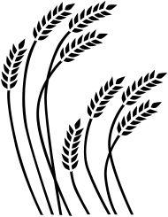 Wheat Drawing Google Search Diy Burlap Crafts Wheat Drawing