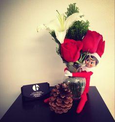 #salon #salonbeau #thesalonbeau #flowers #flowersoftheweek #red #white #rose #lilly #elf #elfontheshelf #greens #holiday #season #december