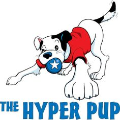 The Hyper Pup training