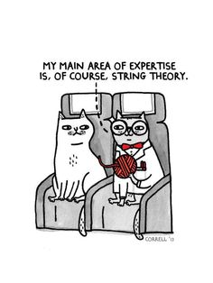 LOL. string theory.