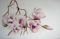 Marie-Claire Houmeau Magnolia